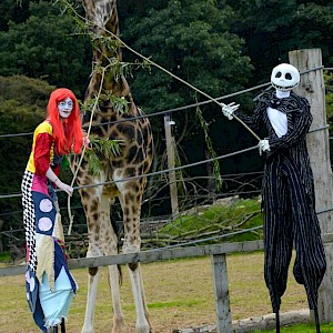 tim burton themed stilt walkers