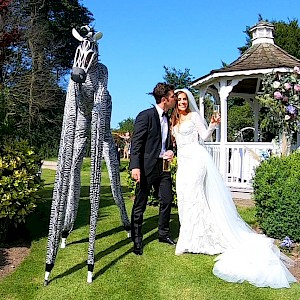 animal stilt walkers hire uk