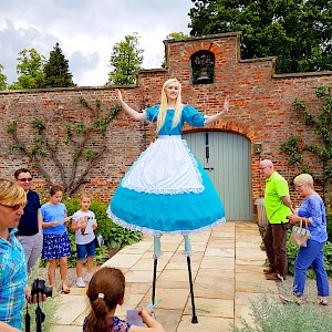alice in wownderland themed entertainers hrie uk