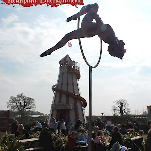 Aerial cheshire cat performer hire