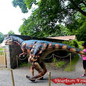 event dinosaur hire