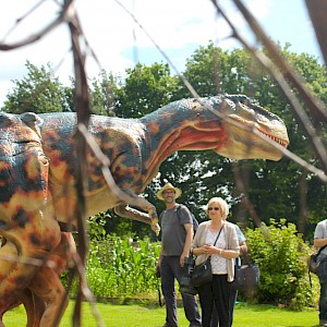 dinosaur act hire ireland