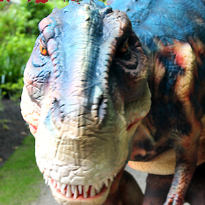 real dinosaur hire uk