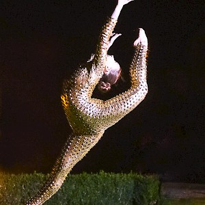 circus acrobat hire uk